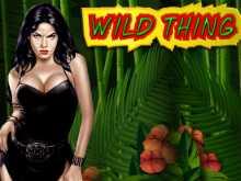 Игровой слот Wild Thing от разработчиков Novomatic для заработка легких денег